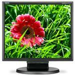 LCD Monitor Multisync E171m 17in 1280x1024 Tn With W-LED Backlight Black