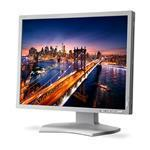 Monitor Multisync P212 21.3in LCD With LED Backlit IPS 1600x1200 Vga DVI-d Hdmi Duc 14-bit